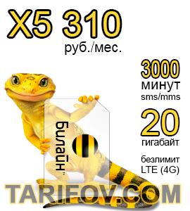 Тарифный план X5 310 от Билайн