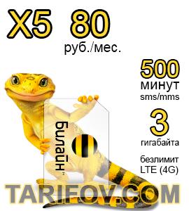 Тарифный план X5 80 от Билайн